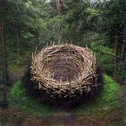 環境芸術  (Environment Art)