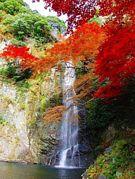 日本リゾートライフ振興協会