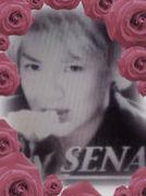 SENAを指名する会