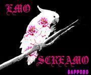 Emo*Screamo@札幌
