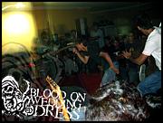 bloodonweddingdress