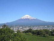 チャレンジ富士五湖マラソン