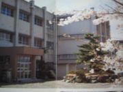 桑部小学校