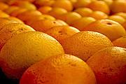 ♪オレンジの会☆