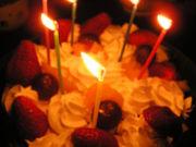1985年4月20日生まれ。