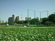 愛知東邦大学 女子サッカー部