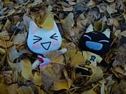 Topはトロちゃん.☆.。.:*・゚