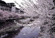 石川町立石川中学校(福島県)