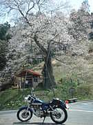 岡山県のバイク乗りの館