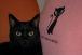 黒猫クラブ