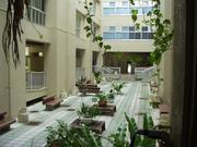 琉球大学教育学部
