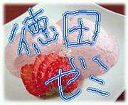 龍短1回生−徳田ゼミ−