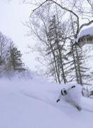 スキースノボー愛好会