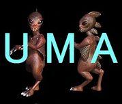 UMA(未確認生物)