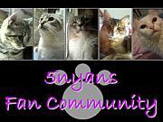 5nyans Fan Community