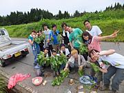 新潟農業ワークキャンプ2011夏!