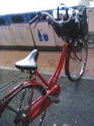 異性と自転車の2人乗りがしたい
