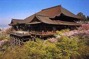 京都の寺社仏閣に行こう!