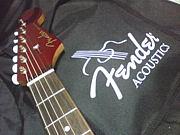Fender アコギ愛好者の会