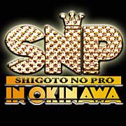仕事のプロin沖縄