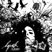 Adore / lynch.