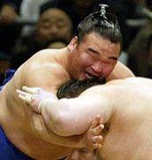 熊本で狂ったように相撲をとる会