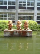 兵庫県立加古川南高等学校
