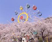 神峰公園(かみね公園)