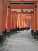 京都寺社巡り