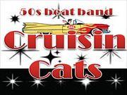 Cruisin` Cats