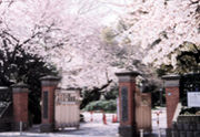 学習院大 経済学部 経済【2007】