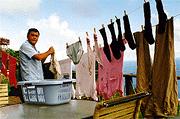 洗濯愛好会