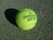 浦和学院高等学校テニス部