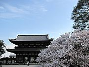 ♪京都のお寺とカフェ処♪