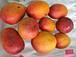 奄美のフルーツ