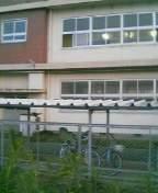 八女市立西中学校