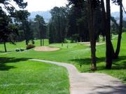 Mixi Bay Area Golf Club!!!