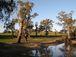 オーストラリアWagga Waggaの会