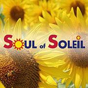 SOUL of SOLEIL