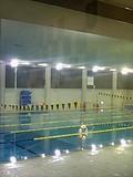 早稲田大学水泳同好会(早水会)