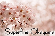 Superfine Okayama