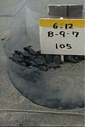ウミガメ孵化場と放流会 (浜松)