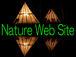 自然のブログやホームページ