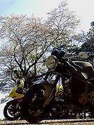 横濱山岳地帯 単車同盟