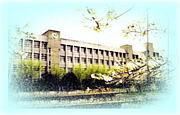 松原第六中学校 00年(H12年)卒