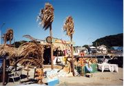 材木座 『太陽の家』