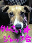 関西☆ジャック会