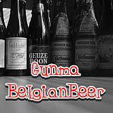 ☆ぐんま県ベルギービール☆