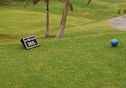 365日!Golfで頭がいっぱい!