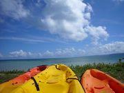 沖縄の自然であそぼう